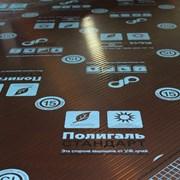 POLYGAL серии СТАНДАРТ, 6 мм фото