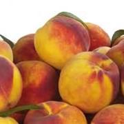 Свежие персики фото