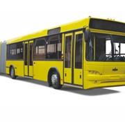 Автобусы городские МАЗ 105 фото