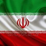 Экспорт в Иран фото