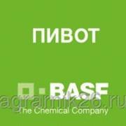 Гербицид ПИВОТ, ВК (100 г/л) фото