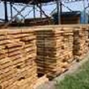 Сушка древесины г. Киев фото
