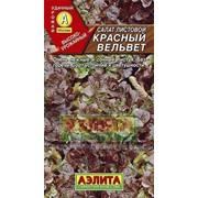 Семена Салат Красный вельвет листовой Ц/П фото