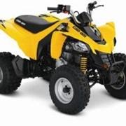 Kвадроцикл Сan-Am|BRP DS 250 Желтый фото