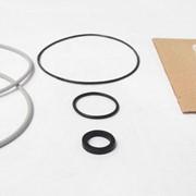Комплект ремонтный для Бинар 5 ( кольцо д.1063, д.1250, д.1251, прокладка д. 1249, втулка д.859) фото