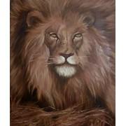 Лев \ Leo картина маслом живопись на холсте царь зверей холст изображение иллюстрация фото