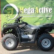 Утилитарный квадроцикл SAGITTA Orso ATV200-M (двухместный) фото