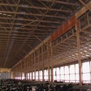 Строительство коровников из деревянных конструкций фото