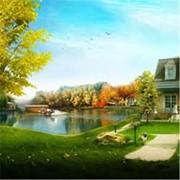 Очистка озер и русел рек. Уборка растительности в водоемах фото