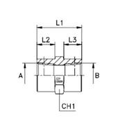 Соединение проходное гайка-гайка ps / прямой адаптер Резьба BSPT фото