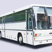 Автобусы МАЗ-152,152А фото
