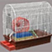 Клетка РОМА №3 (Для грызунов) фото