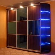 Корпусный шкаф-купе Прато фото