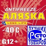 Антифриз красный G12 Аляска 210 кг. фото