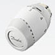 Терморегуляторы RTD InovaTM 3130 фото