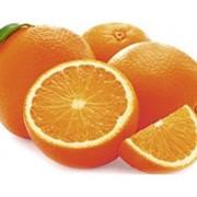 Апельсины HORECA SELECT для сока (сетка) фото