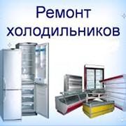 Ремонт холодильников с выездом к клиенту87079397842 фото