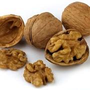 Грецкие орехи четвертинки и бабочки фото