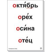 """Комплект таблиц """"Словарные слова"""" - 64 шт, А-3,лам фото"""