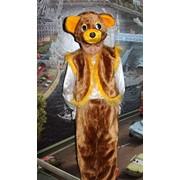 Костюм Медведь бурый фото