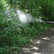 Борьба с комарами Украина фото
