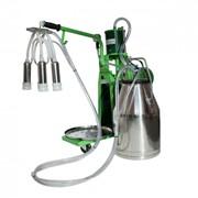 Доильный аппарат для коров Молочная ферма модель 1П фото