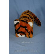 Тигр Соня С981 фото