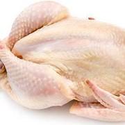 Тушка Цыпленка фото