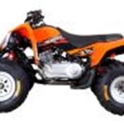 Квадроциклы спортивные GODZILLA Z2S фото