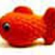 Футляр Рыбка фото