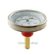 Термометр биметаллический 150°C L=60 50 фото