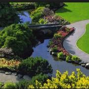 Озеленение сада. Благоустройство и озеленение. Работы по озеленению участка. Ландшафтный дизайн фото