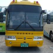 Автобус Hyundai Aero Express Hi-Class 2007г фото