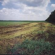 Очистка резервуаров, грунтов и других объектов от нефтепродуктов фото