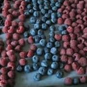 Шоковая заморозка ягод фото