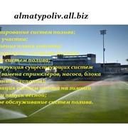 Проектирование систем полива фото