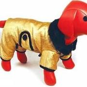 Комбинезон для собак теплый стеганный золотой фото