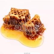 Продукция пчеловодства фото
