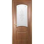 Дверь Донна Р1 фото