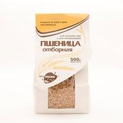 Пшеница 500 гр фото