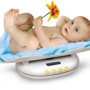 Весы детские напрокат в Петербурге фото