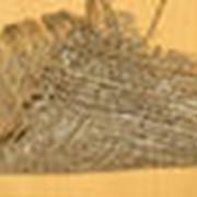 Ткани тарные и упаковочные хлопчатобумажные фото