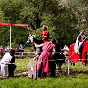 Проведение рыцарских турниров фото