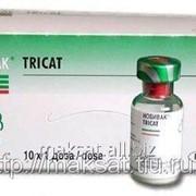 Вакцина Нобивак Tricat Triо 10 х 1D фото