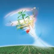 Фунгіцид Тіовіт Джет 80 WG, Сингента, 20 KG /плодові та овочеві к-ри