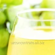 Концентрированный виноградный сок - осветленный фото