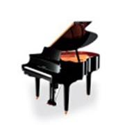 Перевозка пианино в Калининграде