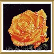 Картина стразами Желтая роза 32х31 см фото