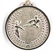 Медаль Карате серебро фото