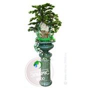 Декоративный напольный фонтан Медичи на колонне фото
